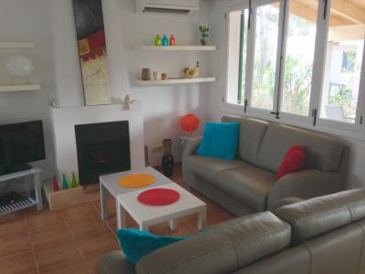 living room with fireplace , TV connected to satellite throughout Europe , musical tower ....