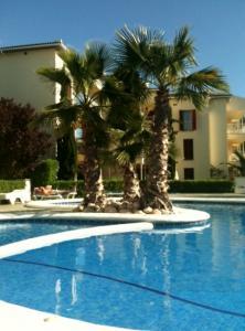 Lasmimosas Apartment To Rent In Pollensa Puerto